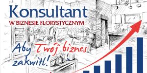 konsultant-300x150
