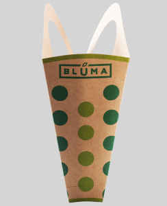 Bluma_Dot_center[1]