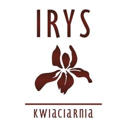 wf-irys-logo-256px